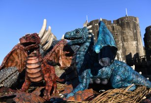 Meet a family of dragons in Wales