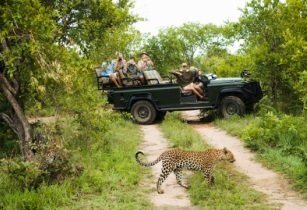 Trafalgar launches new South Africa family adventure